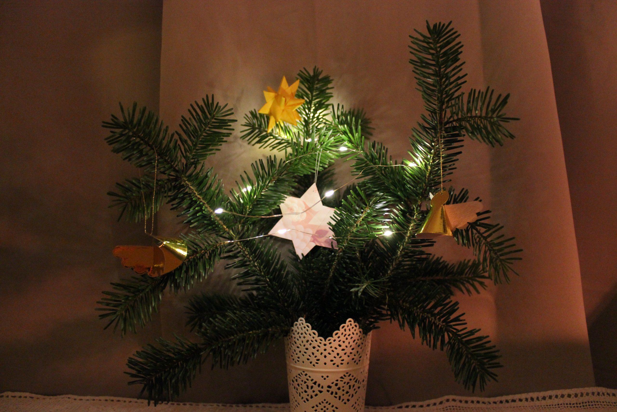 Weihnachtsbaum-Alternative: zusammengesteckte Tannenzweige